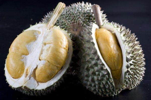 Black-pearl-direct-durian (1)