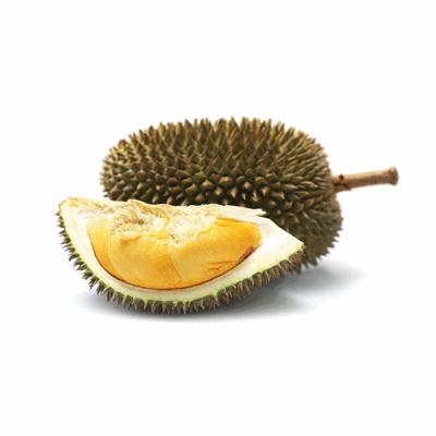 D-101-Durian (1)