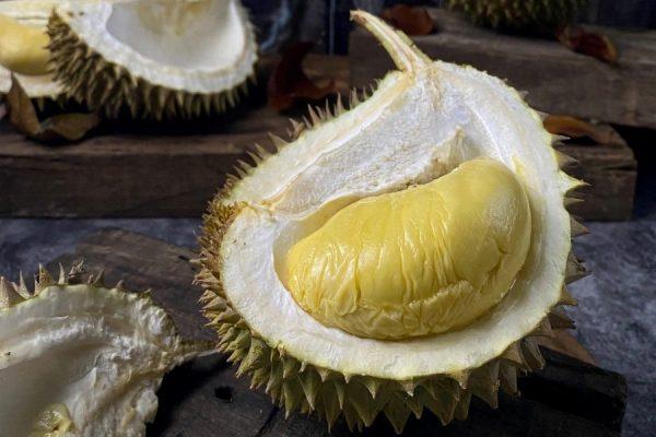 D24 Durian (2)