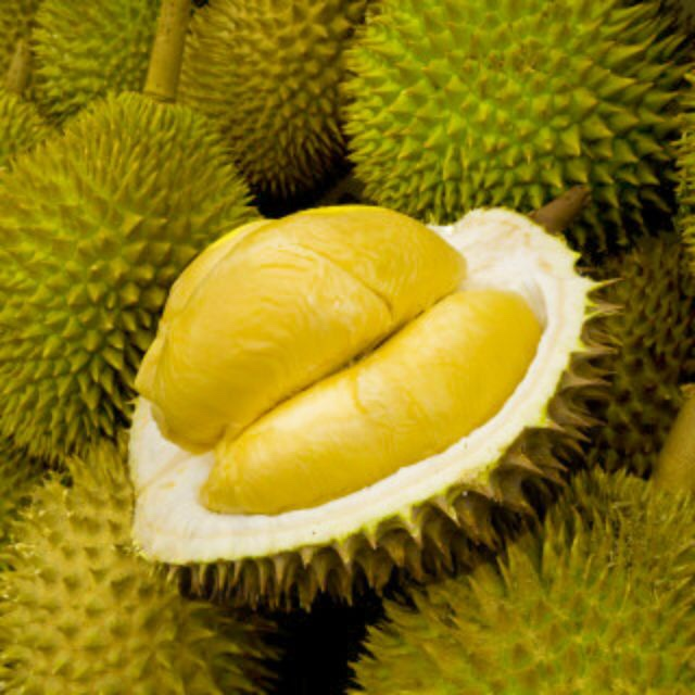 Direct Durian Quality