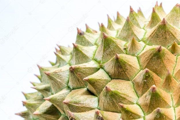 Durian Sharp Spikes-min