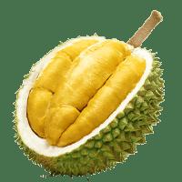 Fresh Musang Durian Icon-min
