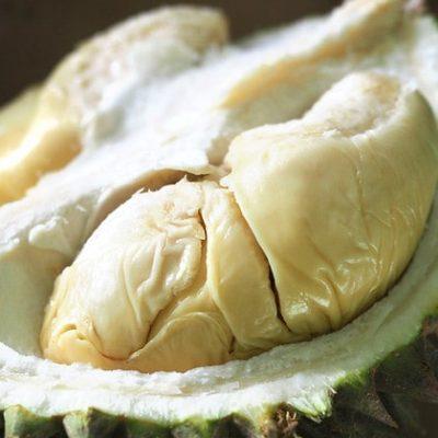 golden-phoenix-durian (2)-min (1)