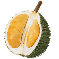 Black Thron Durian PNG-min